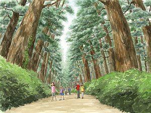 世界一の並木道、日光杉並木