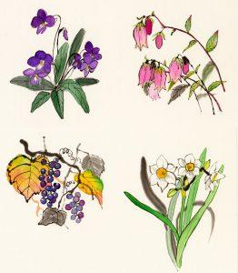 墨絵で春夏秋冬の植物(スミレ、ホタルブクロ、山葡萄、水仙)を描いて四季をあらましました。