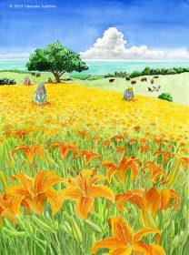 健康食品、サプリメント、トクホメーカーのカタログ表紙イラストで沖縄で栽培されているクワンソウの花が咲き乱れる風景
