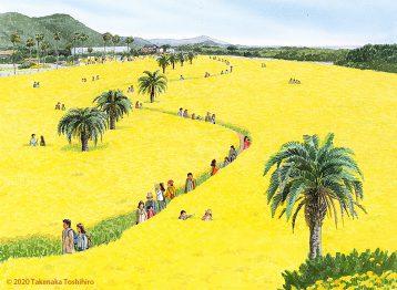 愛知県、渥美半島の菜の花畑は一面の黄色で春の訪れを知らせてくれます