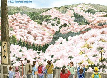昔から有名な奈良県吉野の千本桜。一目千本の名の通り目の前には満開の桜花が朝日に匂っています。